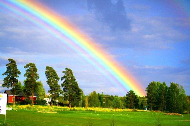 yard-rainbow